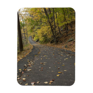 Bear Mountain park in the fall Rectangular Photo Magnet