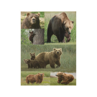 Bear poster for children's bedrooms