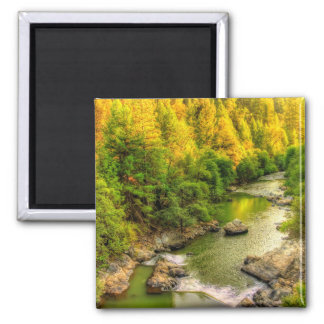Bear River Northern California fall foliage Magnet