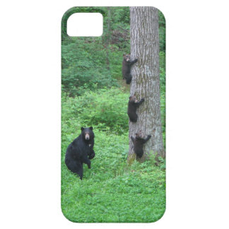 Bear & Three Cubs iPhone 5 Covers
