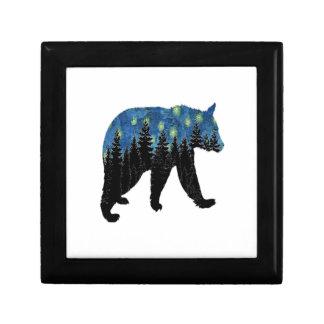 bear with fireflies gift box