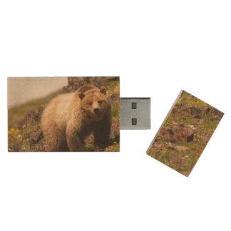 bear wood USB flash drive