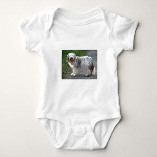 Bearded Collie Dog Baby Bodysuit