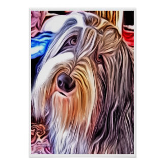 Bearded Collie Dog Painting Poster