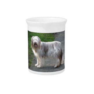 Bearded Collie Dog Pitcher