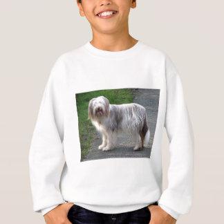 Bearded Collie Dog Sweatshirt