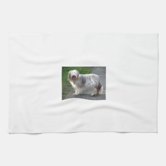Bearded Collie Dog Tea Towel