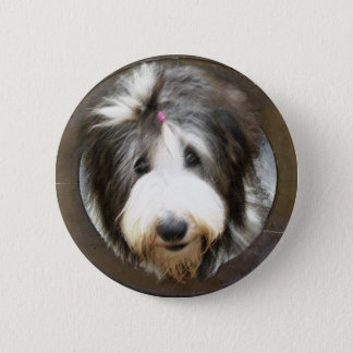 Bearded collie face in old wooden frame 6 cm round badge