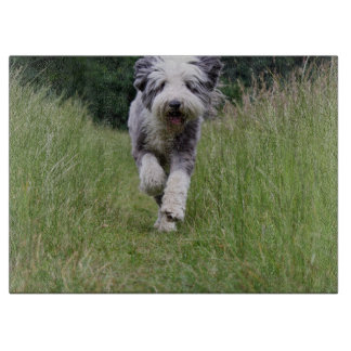 bearded collie in motion cutting board
