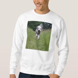 bearded collie in motion sweatshirt
