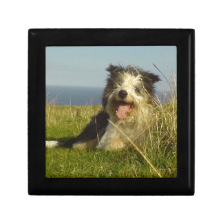 Bearded Collie laying.png Small Square Gift Box