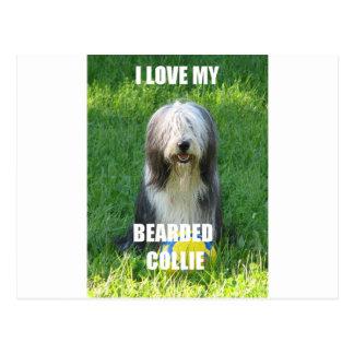 bearded collie love w pic postcard