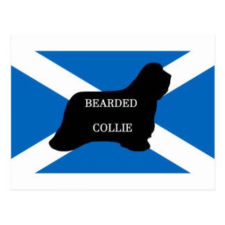 bearded collie name silhouette on flag postcard