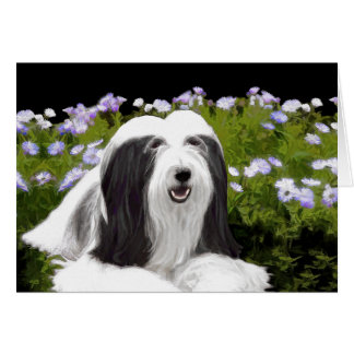 Bearded Collie (Painted) Card