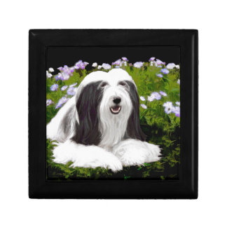 Bearded Collie (Painted) Gift Box