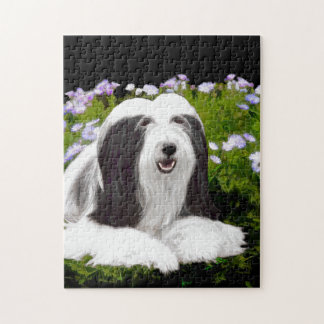 Bearded Collie (Painted) Jigsaw Puzzle