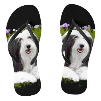 Bearded Collie (Painted) Thongs