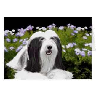 Bearded Collie Painting - Cute Original Dog Art Card