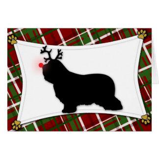 Bearded Collie Reindeer Christmas Card