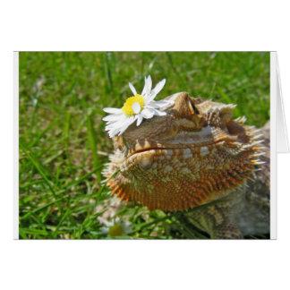 Bearded dragon card