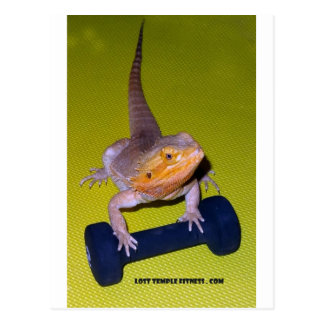 bearded dragon exercising with dumbbell postcard