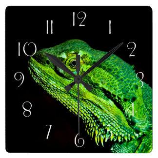 Bearded dragon lizard square wall clock