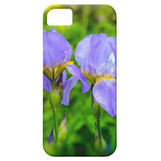 Bearded Iris iPhone 5 Cover