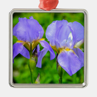 Bearded Iris Silver-Colored Square Decoration