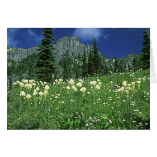 Beargrass at Eunice Lake, Mt. Rainier NP, WA, Card
