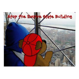 'Bear's Dizzying View' NY Postcard