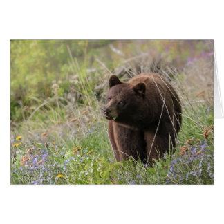 Bears of Alaska - blank card