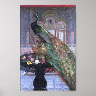 Beatiful Vintage Peacock Image Poster