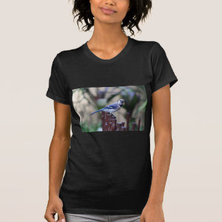 Beatitude of a Bluejay I-FA T-Shirt