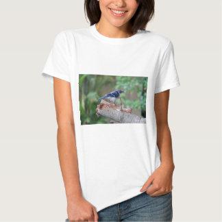 Beatitude of a Bluejay III T Shirt