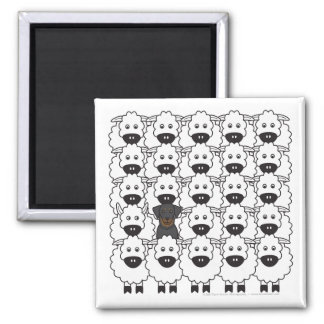 Beauceron in the Sheep Square Magnet