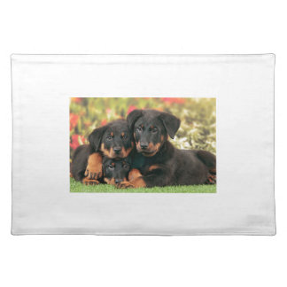 Beauceron Puppies Best Buds Placemat