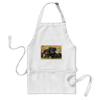 Beauceron Puppies Best Buds Standard Apron