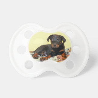 beauceron puppy baby pacifiers