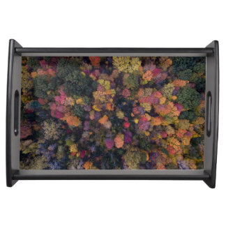 Beautiful aerial view of autumn color forest serving tray