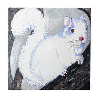 Beautiful Albino Squirrel Ceramic Tile