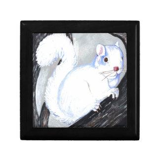 Beautiful Albino Squirrel Gift Box