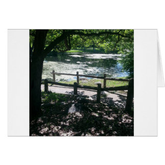 Beautiful all occasion blank greeting card