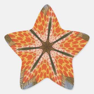 Beautiful amazing feminine African Design animal Star Sticker
