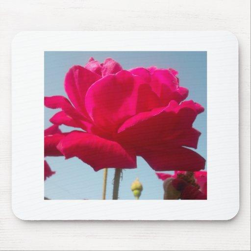 Beautiful Amazing Hakuna Matata Rose For the Bride Mouse Pad