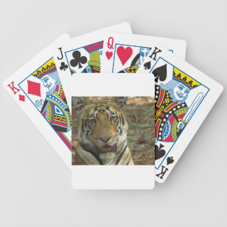 Beautiful and Smiling Tiger Bicycle Playing Cards