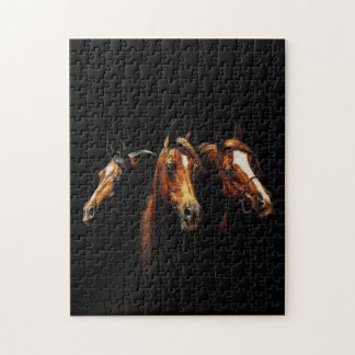 Beautiful Arabian Horses Puzzle