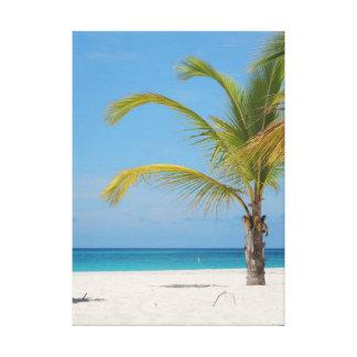 Beautiful Aruba Canvas Print