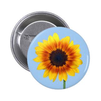 Beautiful Autumn Beauty Sunflower 2014 Buttons