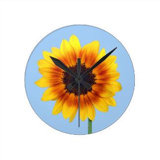Beautiful Autumn Beauty Sunflower 2014 Clocks