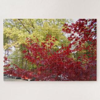 Beautiful Autumn Colors Jigsaw Puzzle